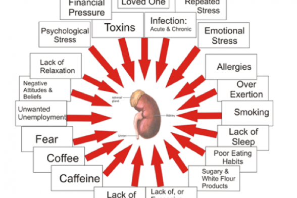 Low Energy? Cravings? You May Have Adrenal Stress