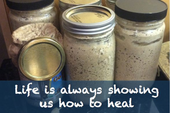 How We Heal (A Lesson From Sourdough Starter)