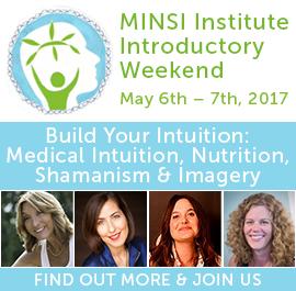 MINSI Introductory Weekend 2017