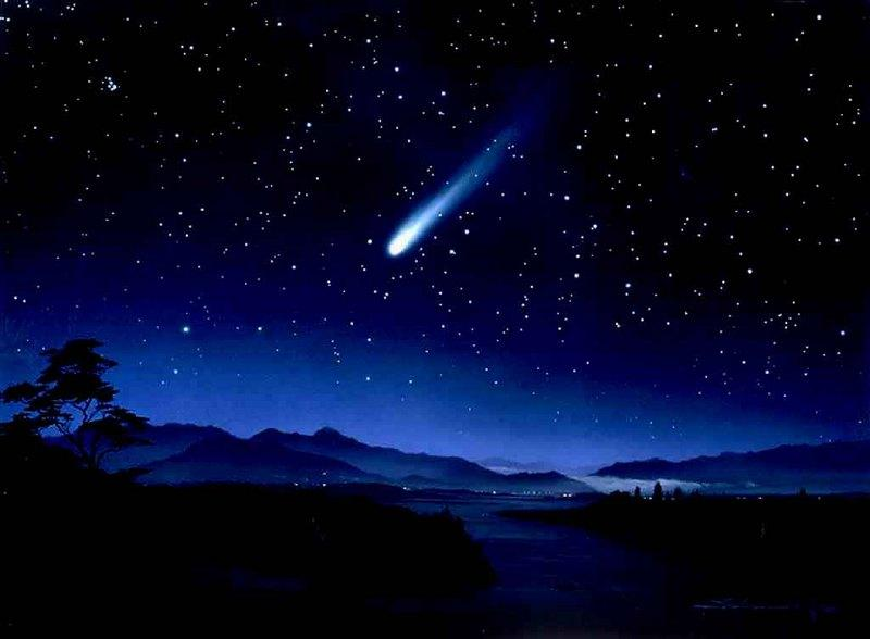 Wishing Upon A Falling Star
