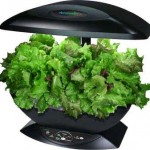 AeroGarden - a Garden without the dirt