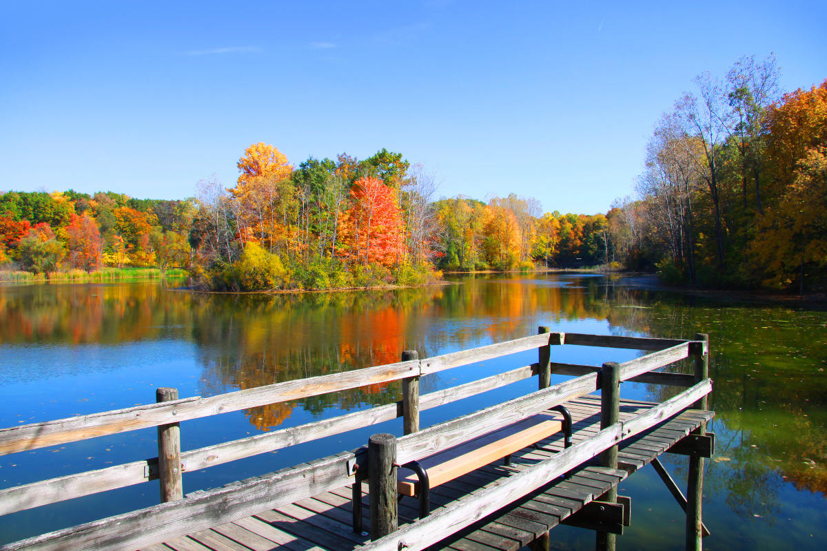 Fall Foliage and Lake